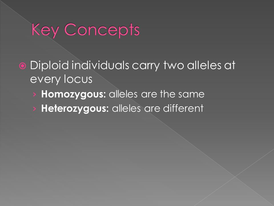  Diploid individuals carry two alleles at every locus › Homozygous: alleles are the same › Heterozygous: alleles are different