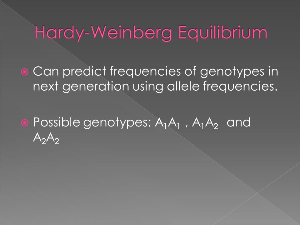  Can predict frequencies of genotypes in next generation using allele frequencies.