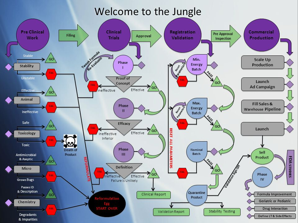 Welcome to the Jungle 5 Pre Clinical Work Clinical Trials Registration Validation Registration Validation Commercial Production Commercial Production Filing Approval Pre Approval Inspection Stability Stable Unstable FAIL GO Animal Effective Ineffective FAIL GO Toxicology Safe Toxic FAIL GO Micro Antimicrobial & Aseptic Grows Bugs FAIL GO Chemistry Passes ID & Description Degradants & Impurities FAIL GO Reformulation Egg START OVER Reformulation Egg START OVER REFORMULATE Death of Product Phase I Phase I Proof of Concept Phase II Phase II Efficacy Phase III Phase III Definition FAIL Ineffective Effective GO FAIL Ineffective Inferior Effective GO Tweak Formula Re-Evaluate FAIL Ineffective Effective GO Clinical Report Failure is Unlikely Min.
