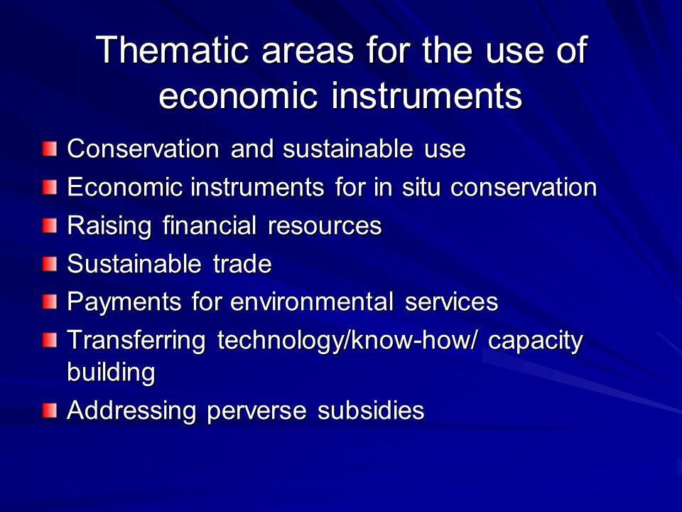 Thematic areas for the use of economic instruments Conservation and sustainable use Economic instruments for in situ conservation Raising financial resources Sustainable trade Payments for environmental services Transferring technology/know-how/ capacity building Addressing perverse subsidies