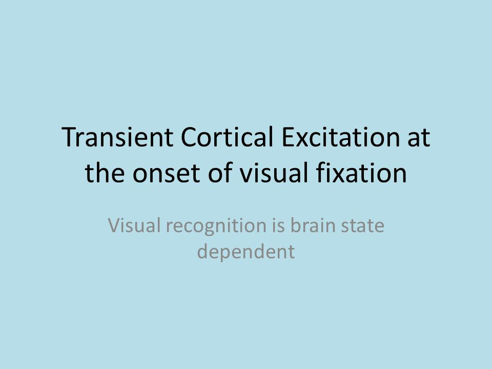 Transient Cortical Excitation at the onset of visual fixation Visual recognition is brain state dependent