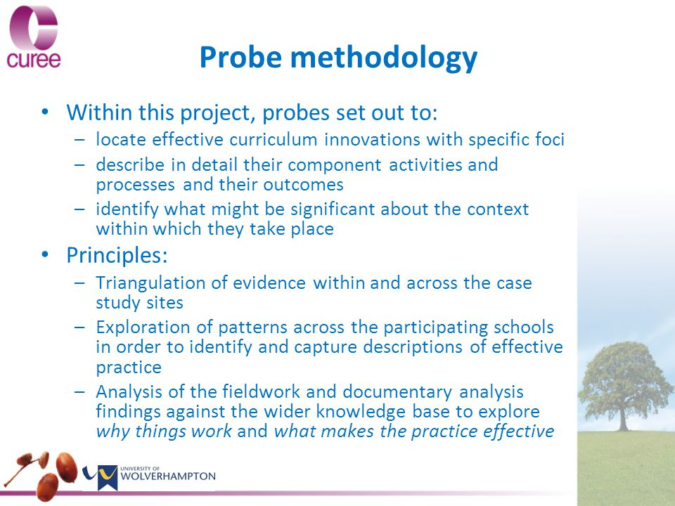Probe methodology Within this project, probes set out to: – –locate effective curriculum innovations with specific foci – –describe in detail their component activities and processes and their outcomes – –identify what might be significant about the context within which they take place Principles: – –Triangulation of evidence within and across the case study sites – –Exploration of patterns across the participating schools in order to identify and capture descriptions of effective practice – –Analysis of the fieldwork and documentary analysis findings against the wider knowledge base to explore why things work and what makes the practice effective