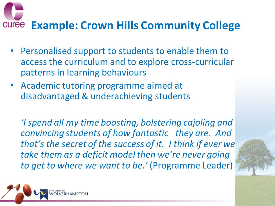 Example: Crown Hills Community College Personalised support to students to enable them to access the curriculum and to explore cross-curricular patterns in learning behaviours Academic tutoring programme aimed at disadvantaged & underachieving students 'I spend all my time boosting, bolstering cajoling and convincing students of how fantastic they are.