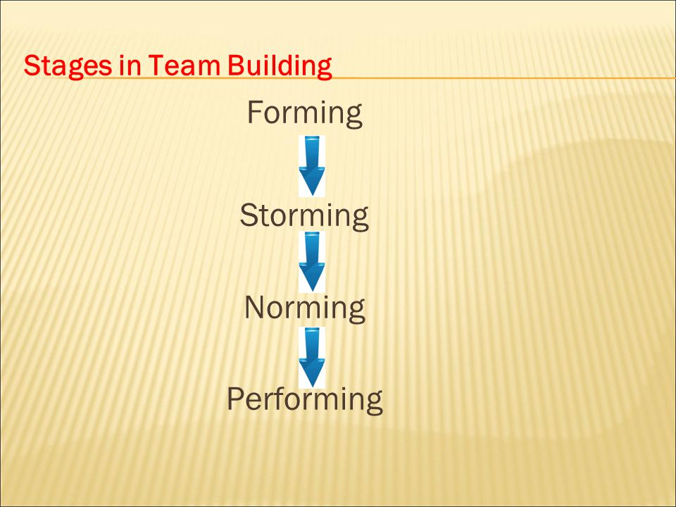 STAGE 1 : FORMING  Defines the problem  Agrees on goals and formulates strategies for tackling the tasks.