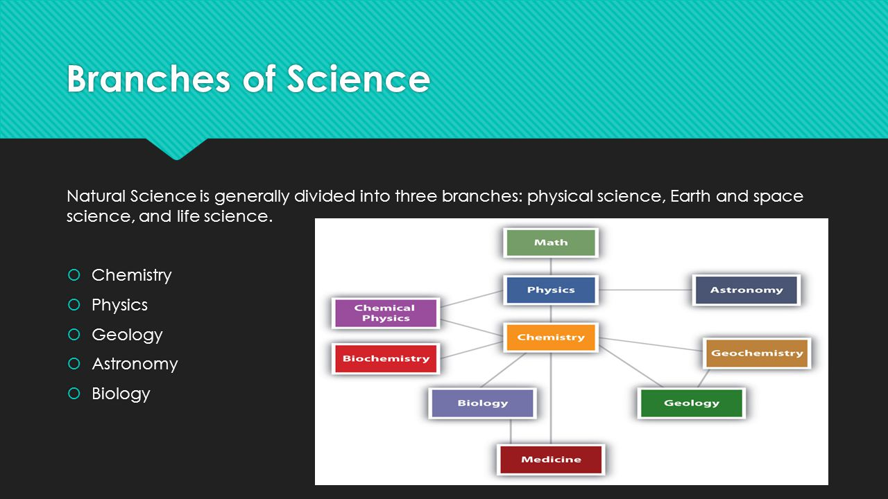 Branches of Science Natural Science is generally divided into three branches: physical science, Earth and space science, and life science.