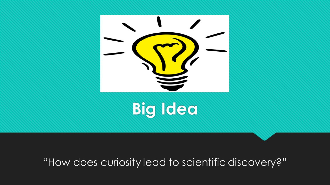 Big Idea How does curiosity lead to scientific discovery