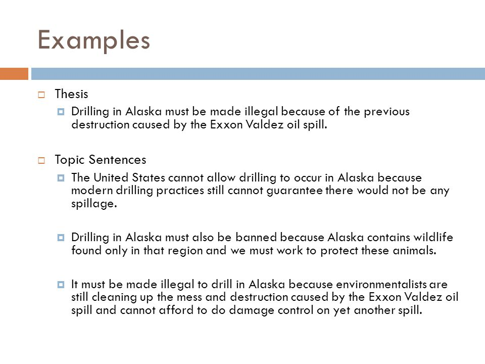 essays about oil spills