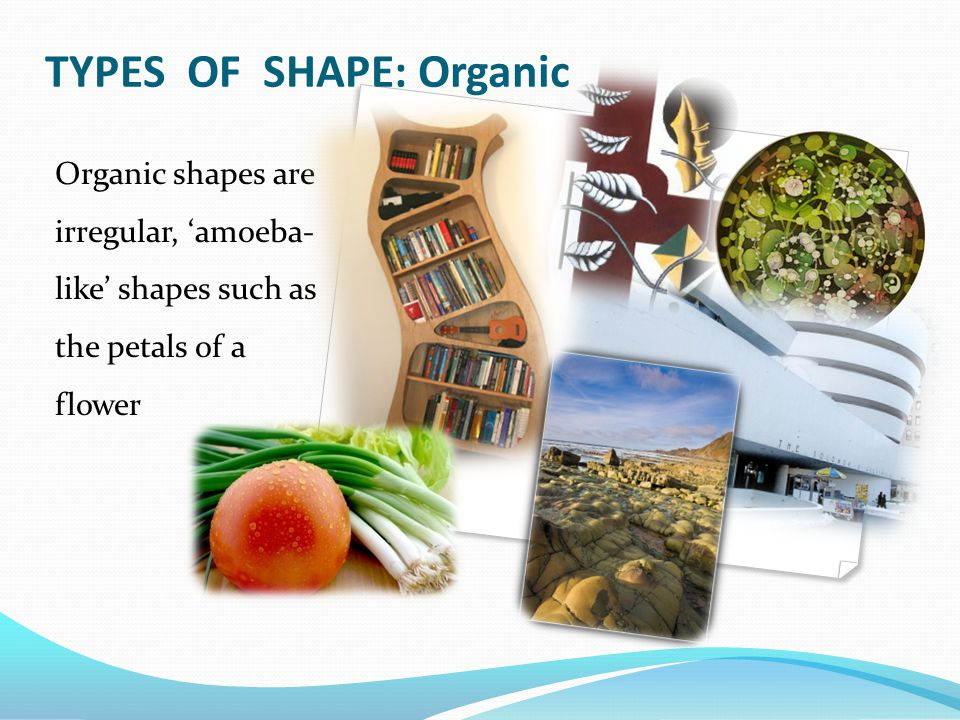 TYPES OF SHAPE: Organic Organic shapes are irregular, 'amoeba- like' shapes such as the petals of a flower