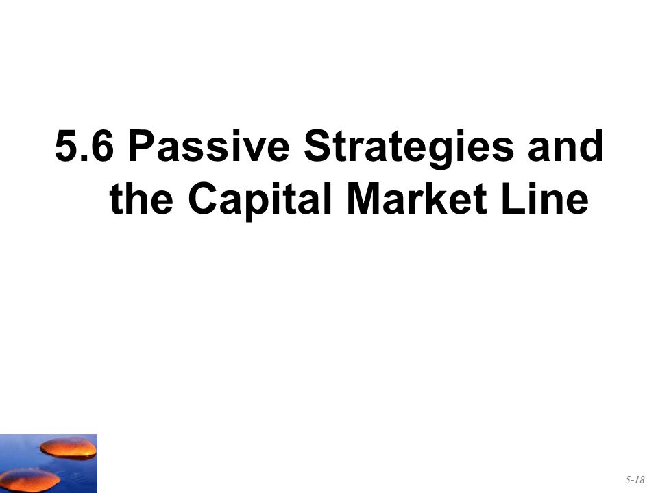 5.6 Passive Strategies and the Capital Market Line 5-18