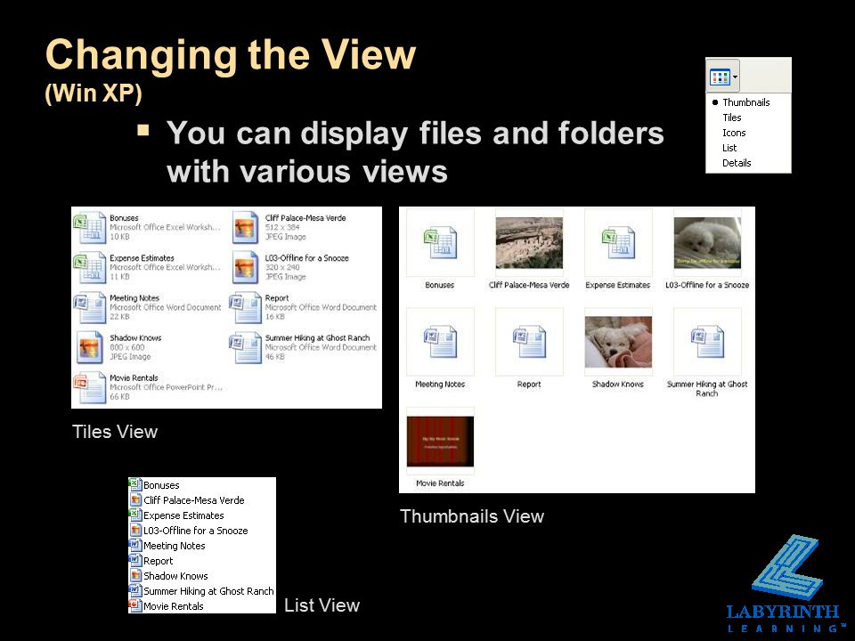 Changing the View (Win XP)  You can display files and folders with various views Tiles View Thumbnails View List View