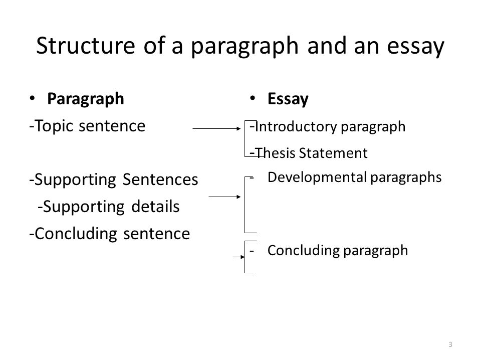 structure of an essay question