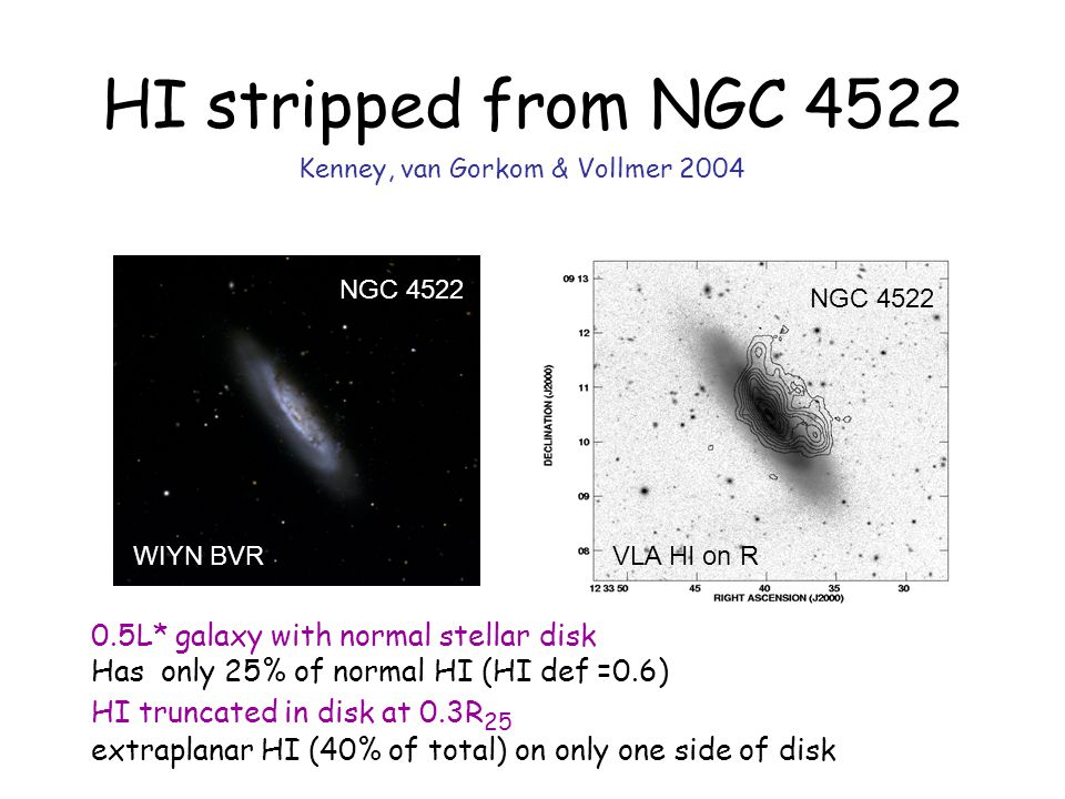 HI stripped from NGC L* galaxy with normal stellar disk Has only 25% of normal HI (HI def =0.6) HI truncated in disk at 0.3R 25 extraplanar HI (40% of total) on only one side of disk NGC 4522 WIYN BVR NGC 4522 VLA HI on R Kenney, van Gorkom & Vollmer 2004
