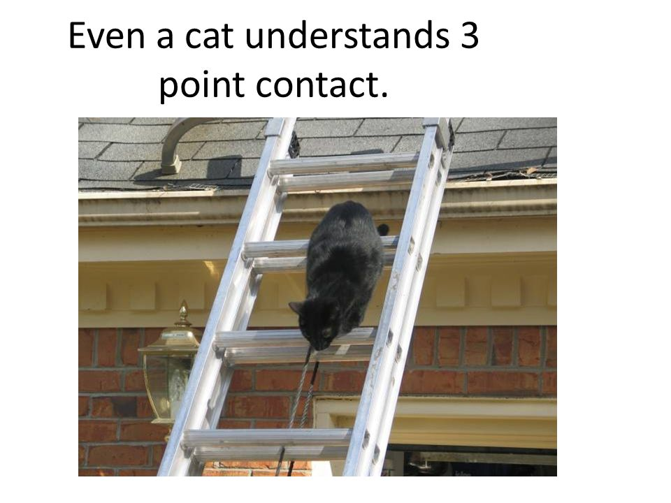 Even a cat understands 3 point contact.