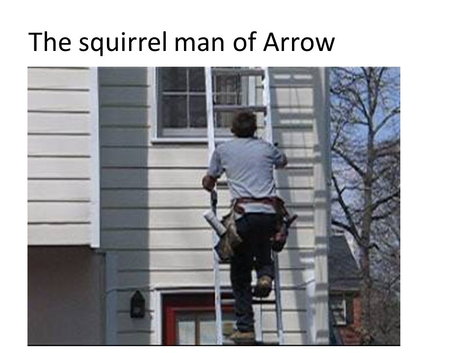The squirrel man of Arrow