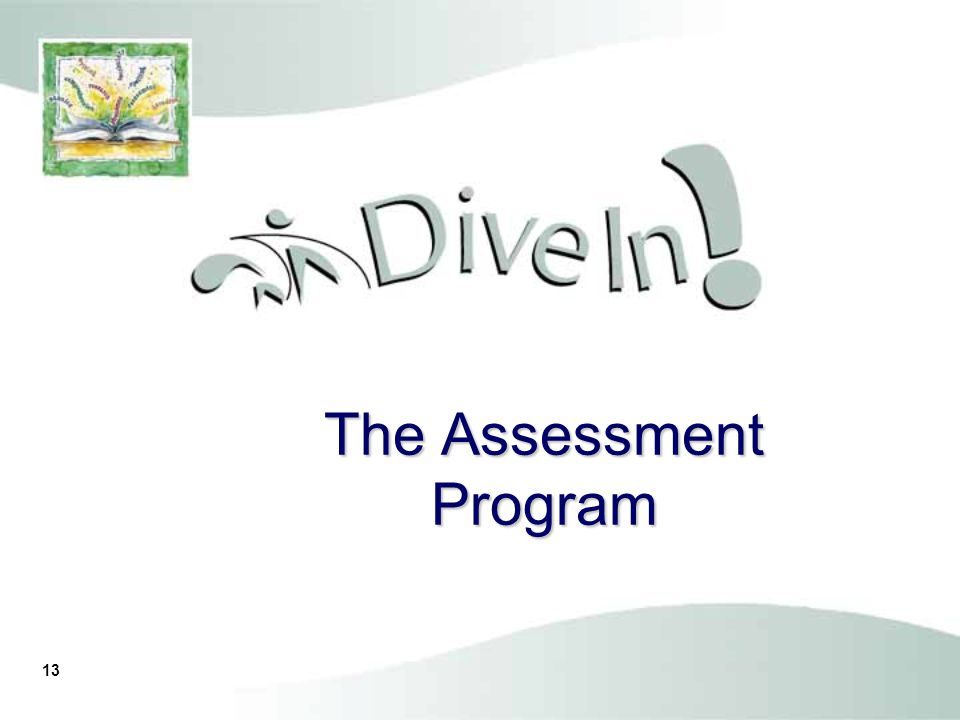 12 Three Types of Assessments Screening/Entry Level Monitoring Outcome/Summative