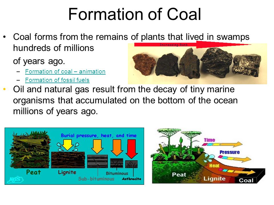Fossil fuels What are fossil fuels? –Natural resources that is ...