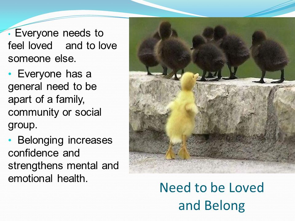 Need to be Loved and Belong Everyone needs to feel loved and to love someone else. Everyone has a general need to be apart of a family, community or s