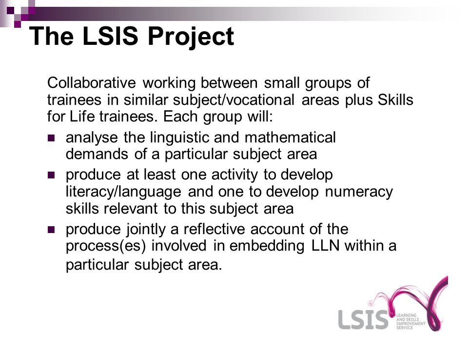 The LSIS Project Collaborative working between small groups of trainees in similar subject/vocational areas plus Skills for Life trainees.
