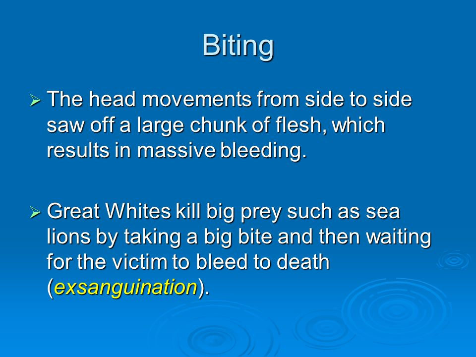 Biting  The head movements from side to side saw off a large chunk of flesh, which results in massive bleeding.