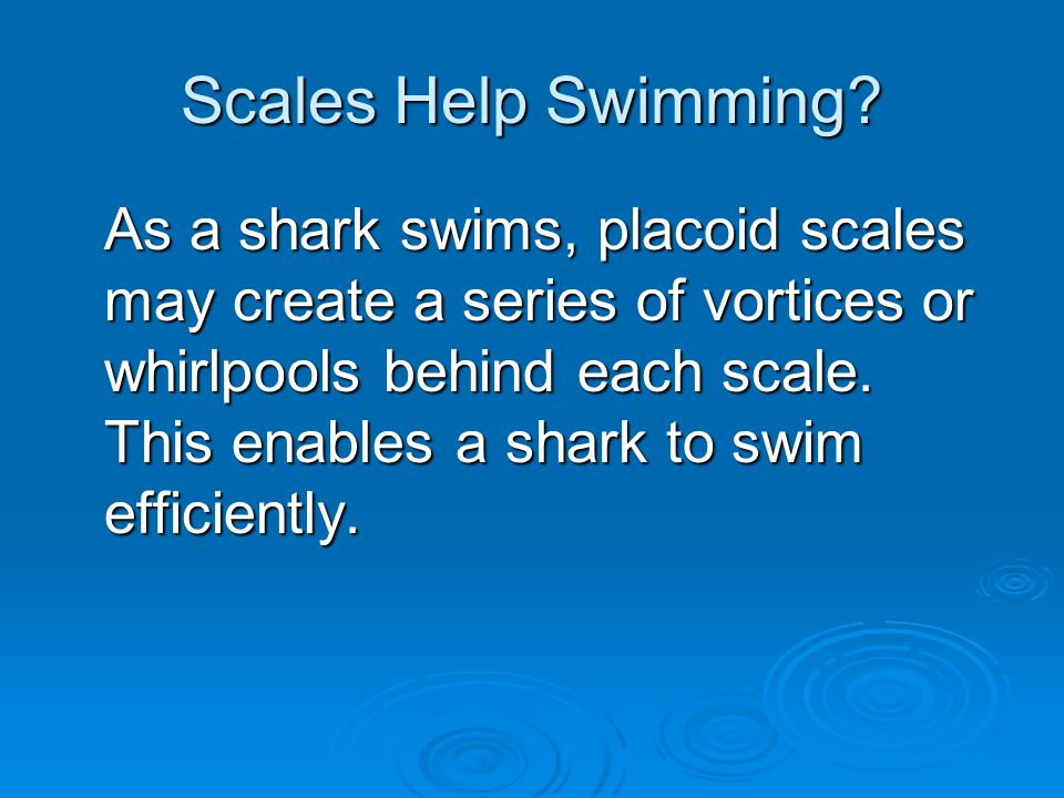 Scales Help Swimming.