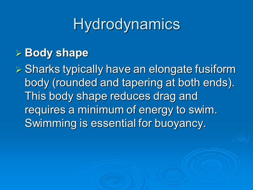 Hydrodynamics  Body shape  Sharks typically have an elongate fusiform body (rounded and tapering at both ends).