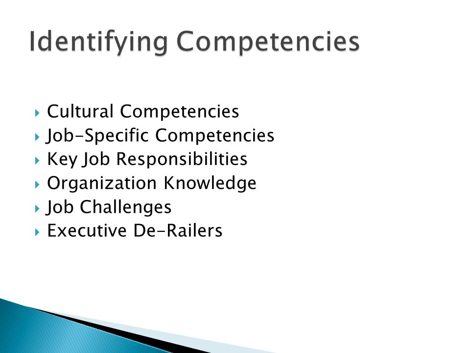  Cultural Competencies  Job-Specific Competencies  Key Job Responsibilities  Organization Knowledge  Job Challenges  Executive De-Railers