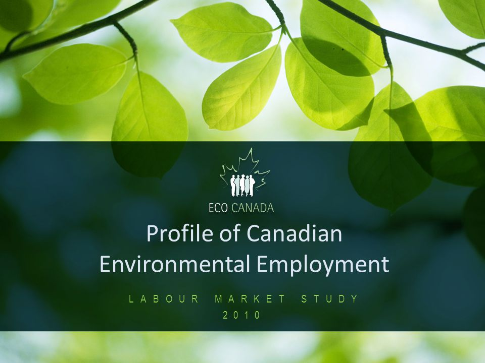 1 Profile of Canadian Environmental Employment LABOUR MARKET STUDY 2010