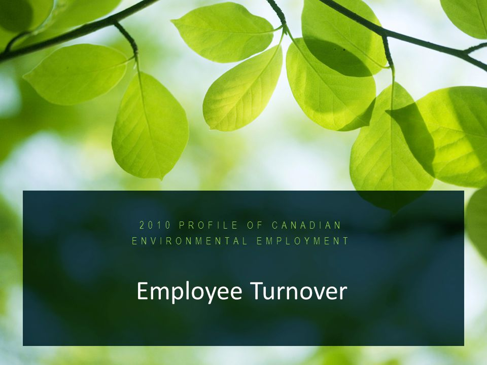 2010 Profile of Canadian Environmental Employment PROFILE OF CANADIAN ENVIRONMENTAL EMPLOYMENT Employee Turnover