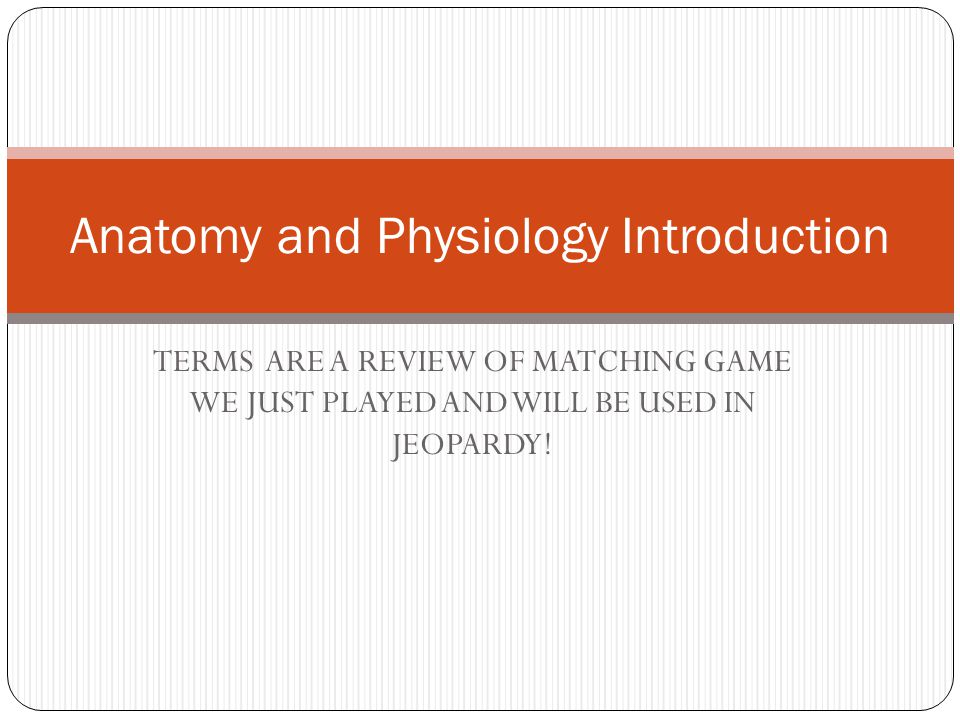 TERMS ARE A REVIEW OF MATCHING GAME WE JUST PLAYED AND WILL BE USED ...