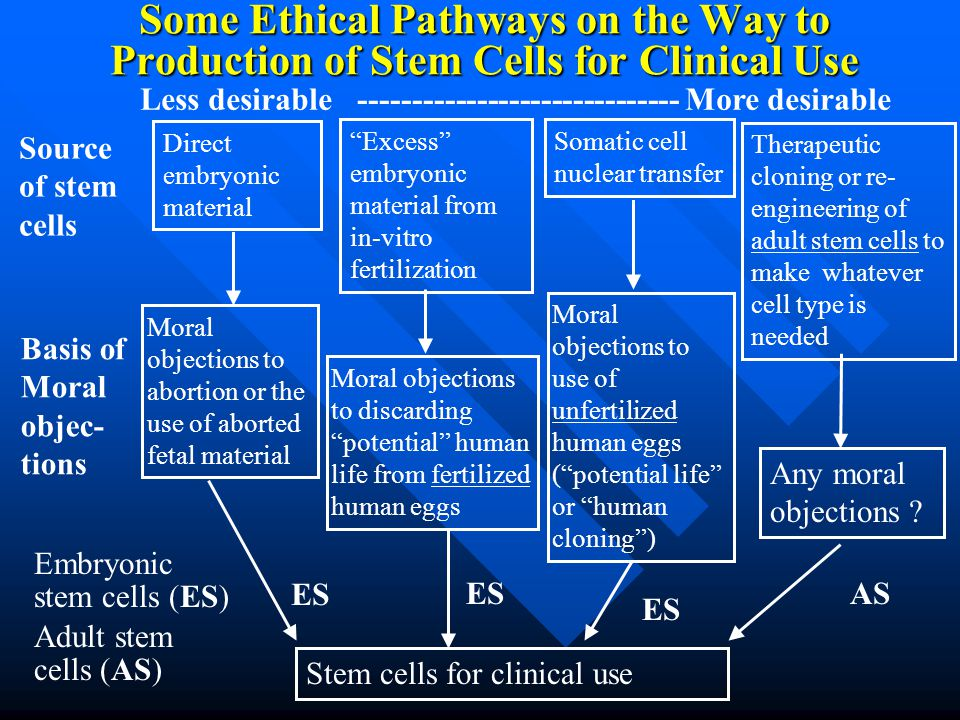 Law that prohibits stem cells being extracted from abortions?