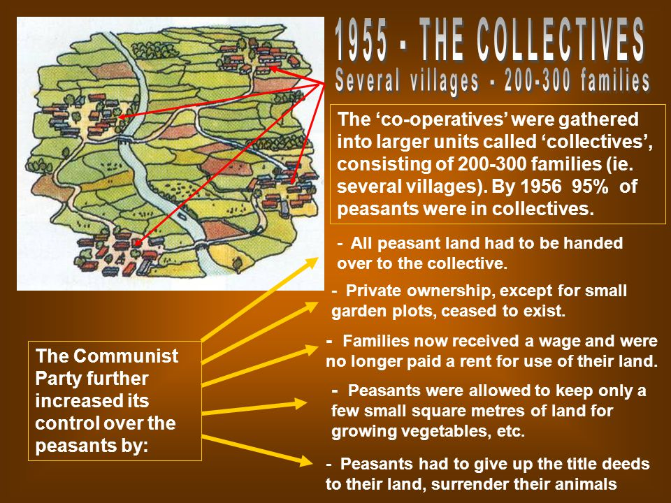 The 'co-operatives' were gathered into larger units called 'collectives', consisting of families (ie.