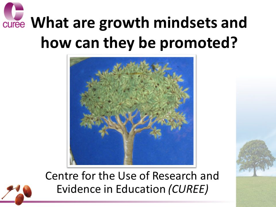 What are growth mindsets and how can they be promoted.