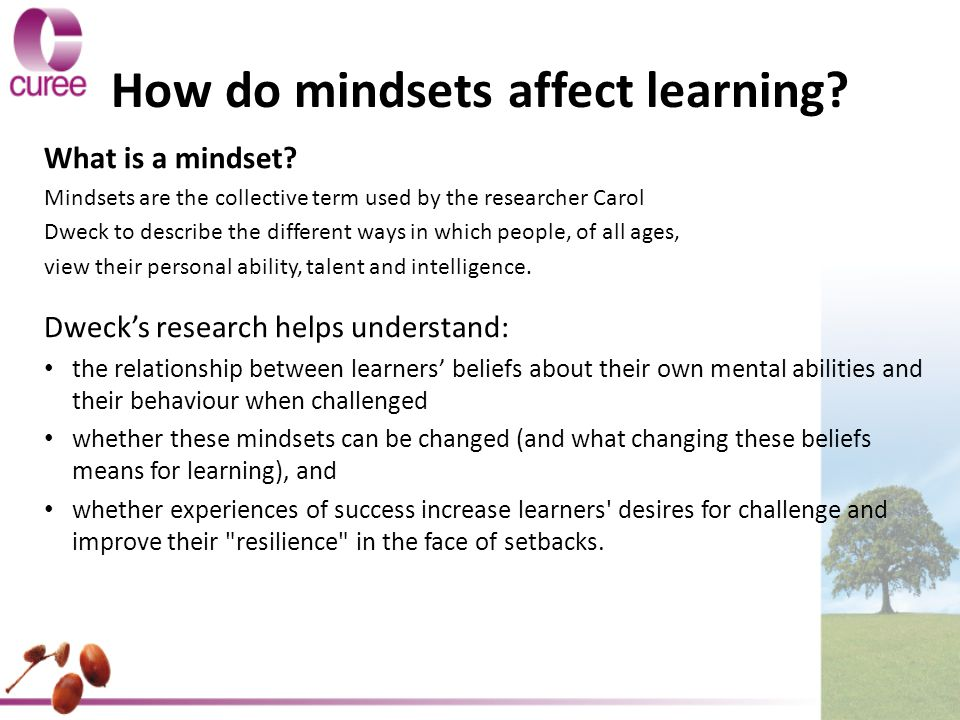 How do mindsets affect learning. What is a mindset.