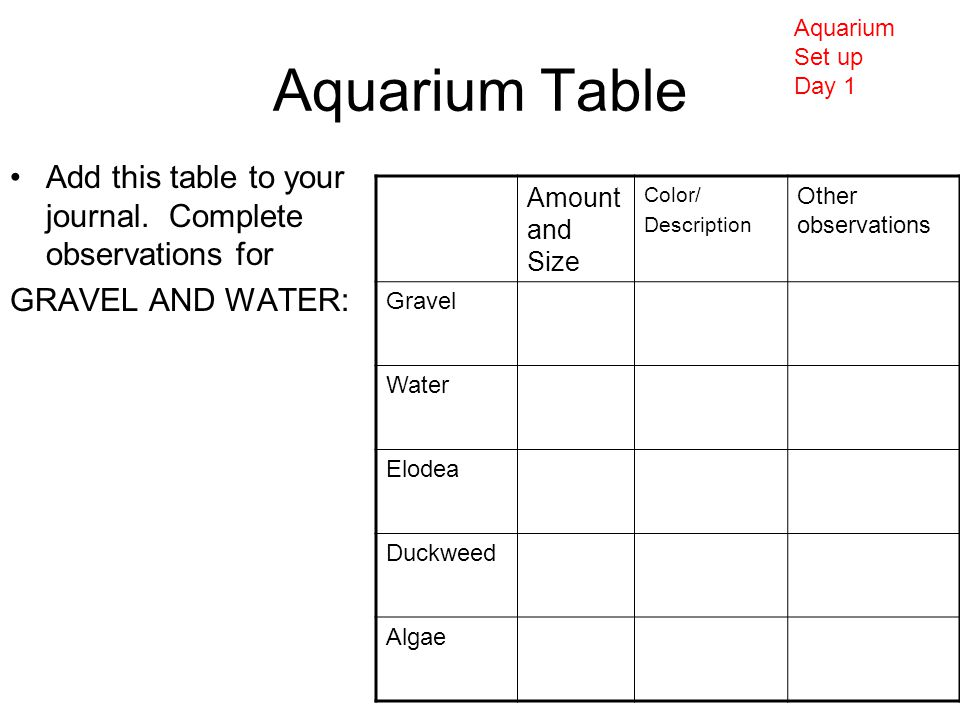 Aquarium Table Add this table to your journal.