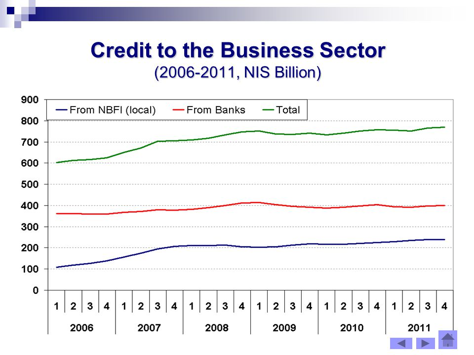 Credit to the Business Sector ( , NIS Billion)