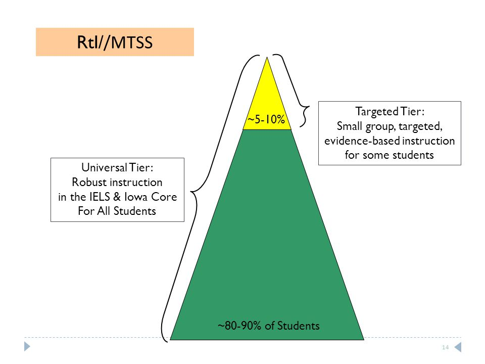 Universal Tier: Robust instruction in the IELS & Iowa Core For All Students Targeted Tier: Small group, targeted, evidence-based instruction for some students ~80-90% of Students ~5-10% RtI/ /MTSS 14