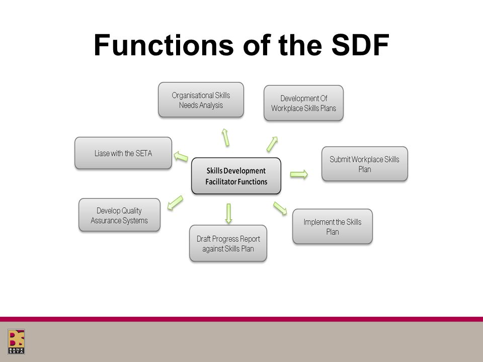 Functions of the SDF