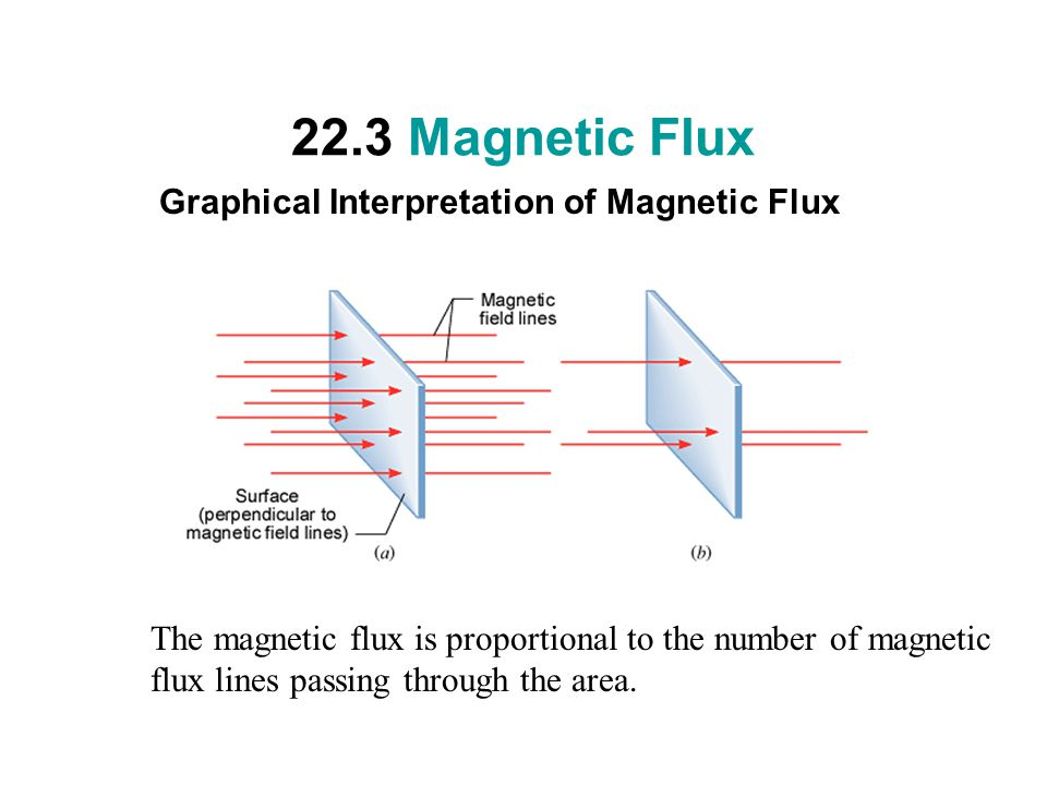 22.3 Magnetic Flux Graphical Interpretation of Magnetic Flux The magnetic flux is proportional to the number of magnetic flux lines passing through the area.