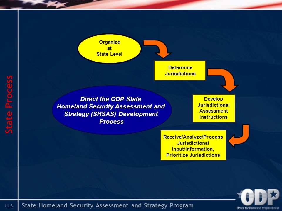 State Homeland Security Assessment and Strategy Program 11.3 State Process Determine Jurisdictions Develop Jurisdictional Assessment Instructions Receive/Analyze/Process Jurisdictional Input/Information, Prioritize Jurisdictions Organize at State Level Direct the ODP State Homeland Security Assessment and Strategy (SHSAS) Development Process
