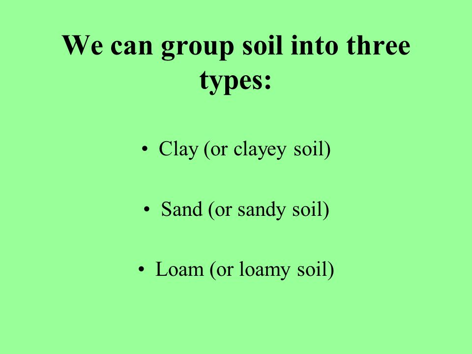 We can group soil into three types: Clay (or clayey soil) Sand (or sandy soil) Loam (or loamy soil)