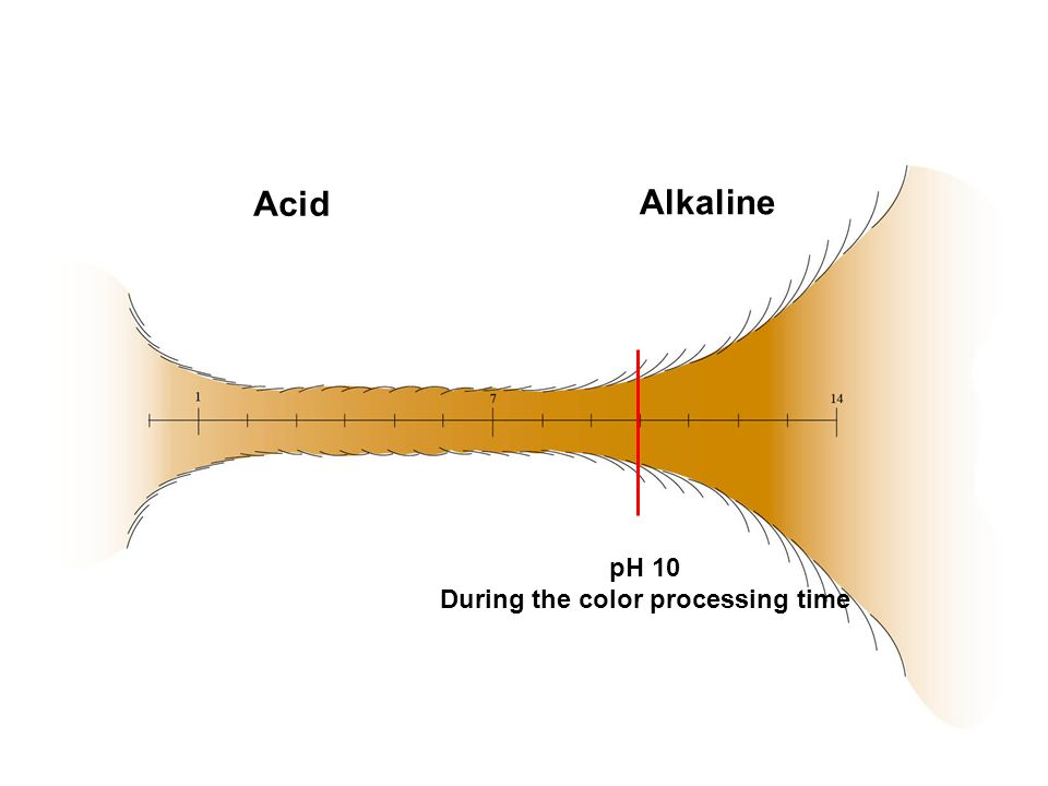pH 10 During the color processing time Acid Alkaline
