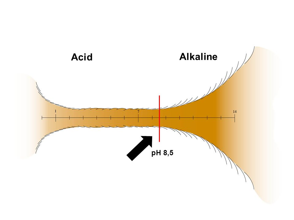 Acid Alkaline pH 8,5