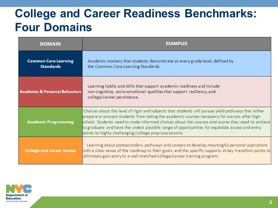3 DOMAIN EXAMPLES Common Core Learning Standards Academic mastery that students demonstrate at every grade level, defined by the Common Core Learning Standards.