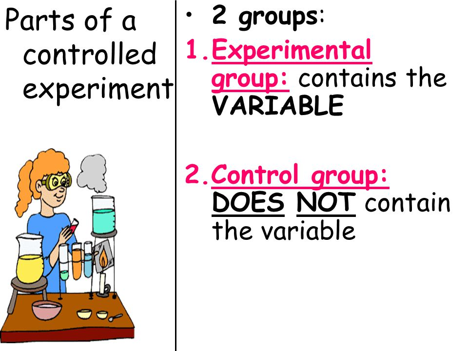 Image result for control groups and experimental groups