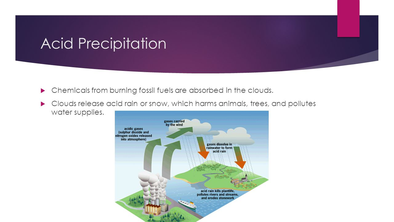 Acid Precipitation  Chemicals from burning fossil fuels are absorbed in the clouds.