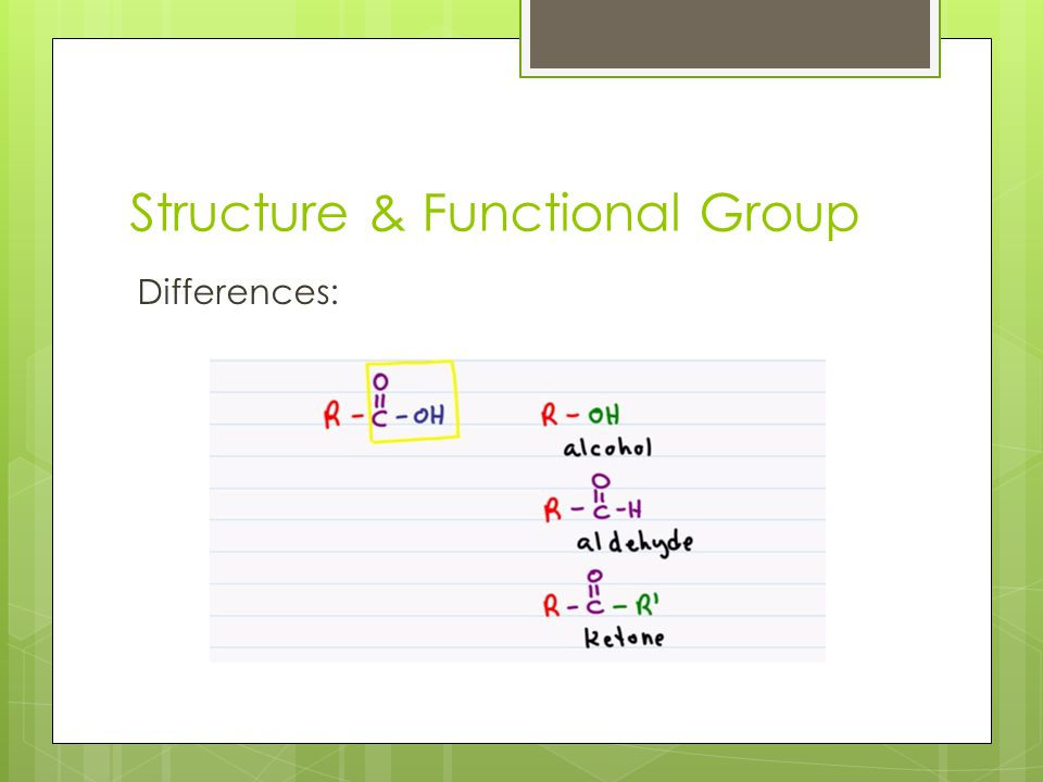 Structure & Functional Group Differences: