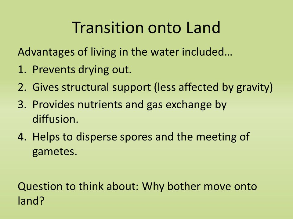 Transition onto Land Advantages of living in the water included… 1.Prevents drying out.