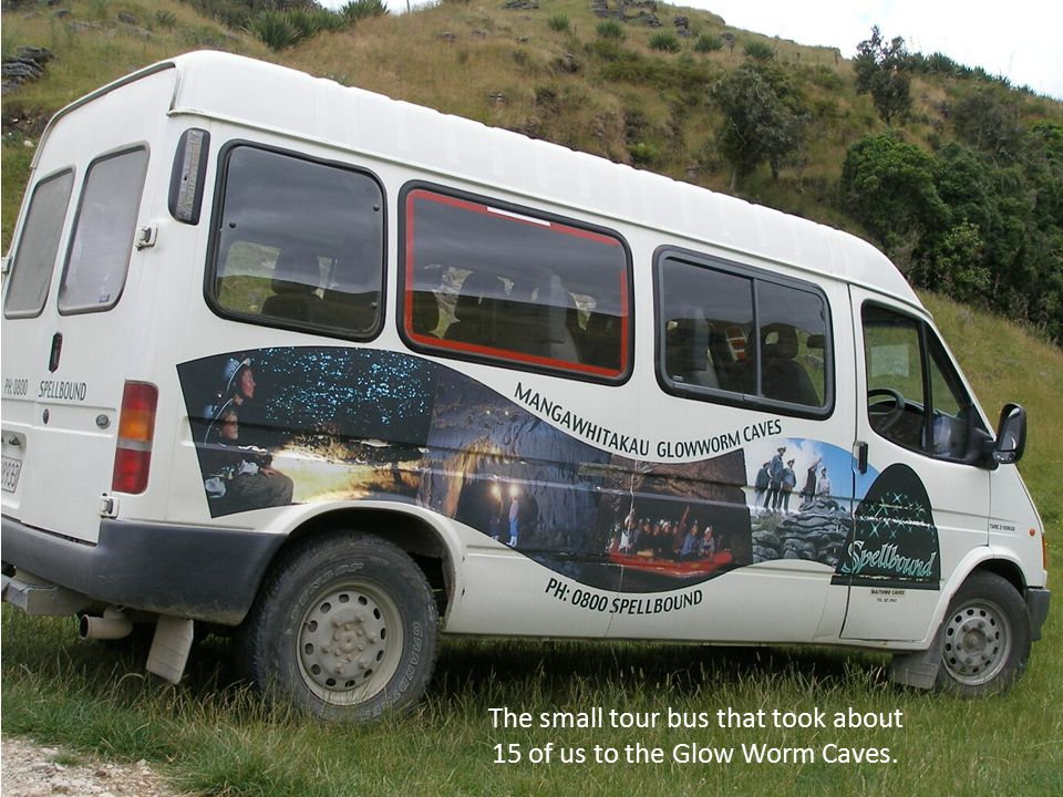 waimangu volcanic valley bus shattle