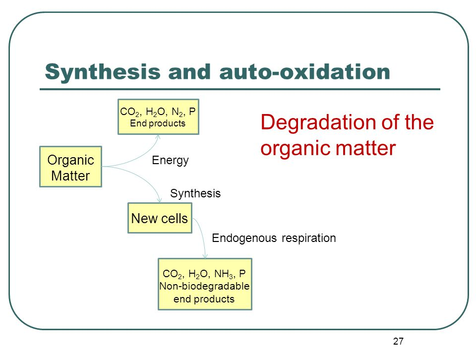 27 Synthesis and auto-oxidation Degradation of the organic matter Organic Matter CO 2, H 2 O, N 2, P End products CO 2, H 2 O, NH 3, P Non-biodegradable end products New cells Energy Synthesis Endogenous respiration