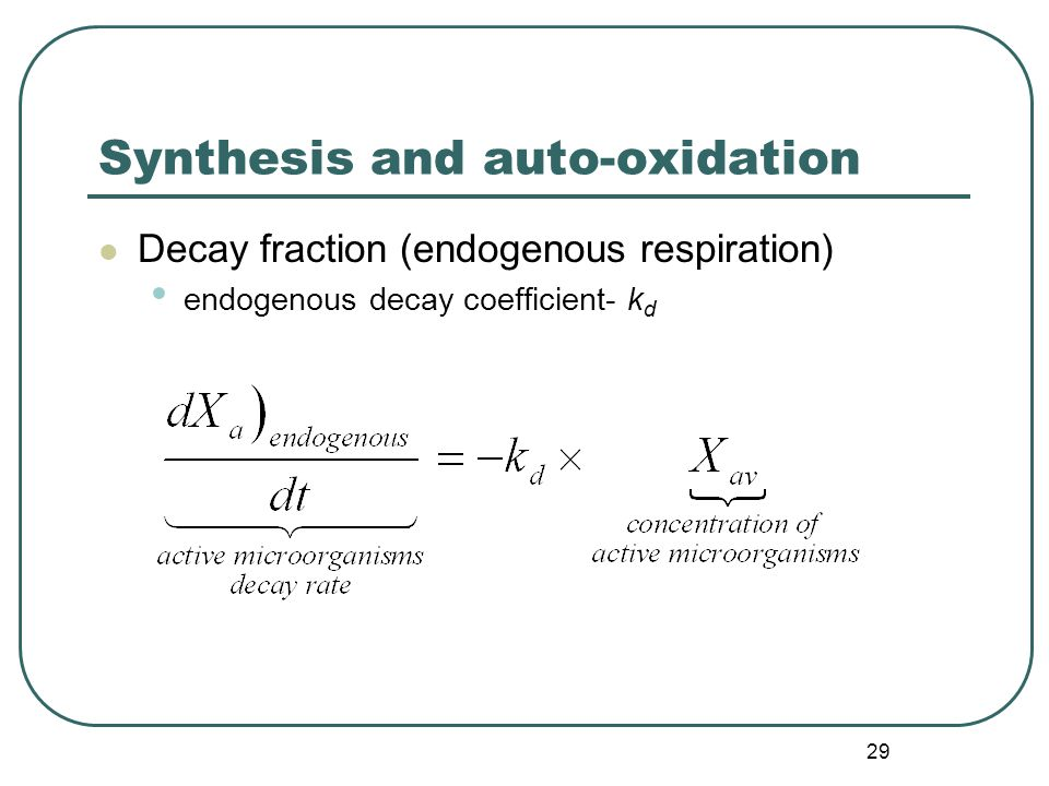 29 Synthesis and auto-oxidation Decay fraction (endogenous respiration) endogenous decay coefficient- k d
